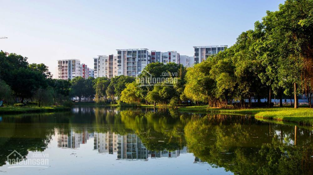 Cho thuê căn hộ Celadon City - dự án xanh với 16ha công viên biệt lập - LH xem nhà 0916262687